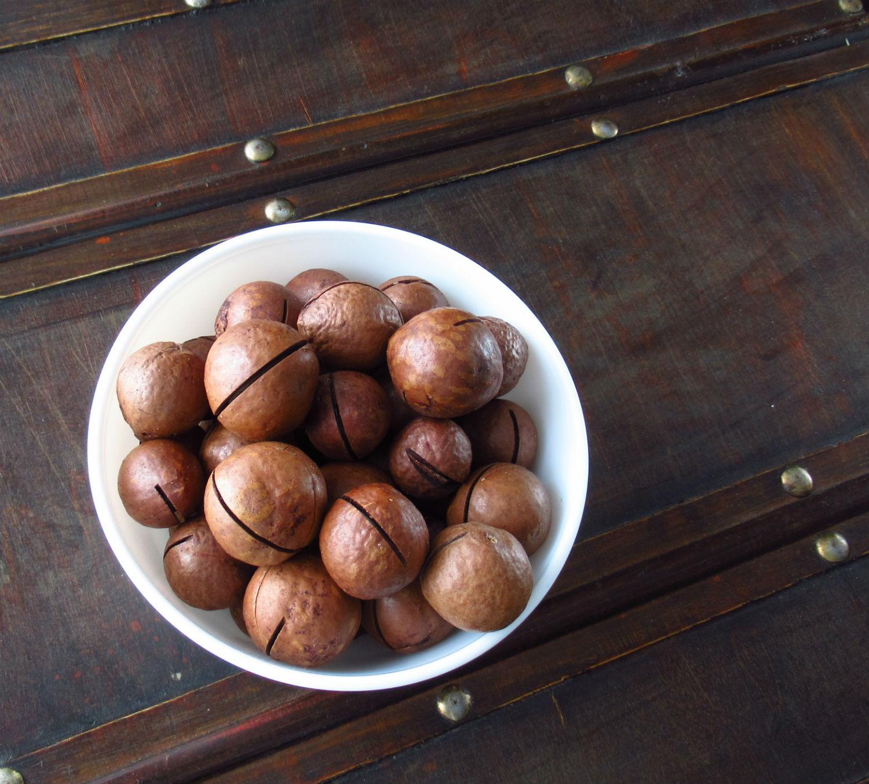 Орех макадамия – польза и вред для организма женщин и мужчин, противопоказания, как выбрать, есть и хранить