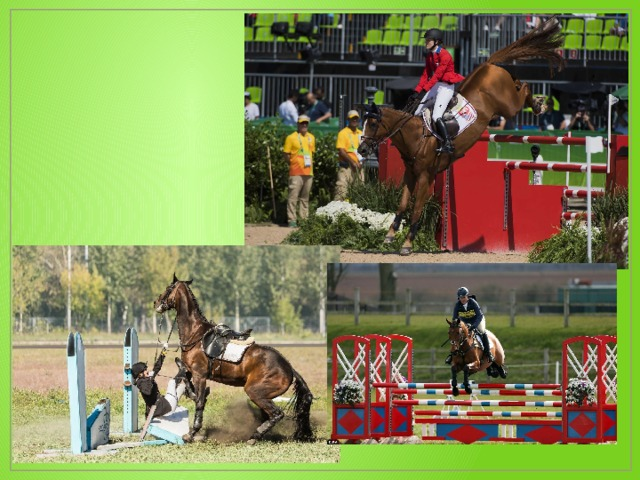 Конкур - это престижный и стильный вид конного спорта