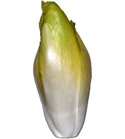 Витлуф, эндивий и эскариол – полезные цикорные салаты, которые несложно выращивать