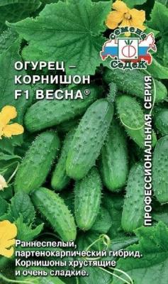 Огурцы корнишоны — 7 лучших сортов для открытого грунта