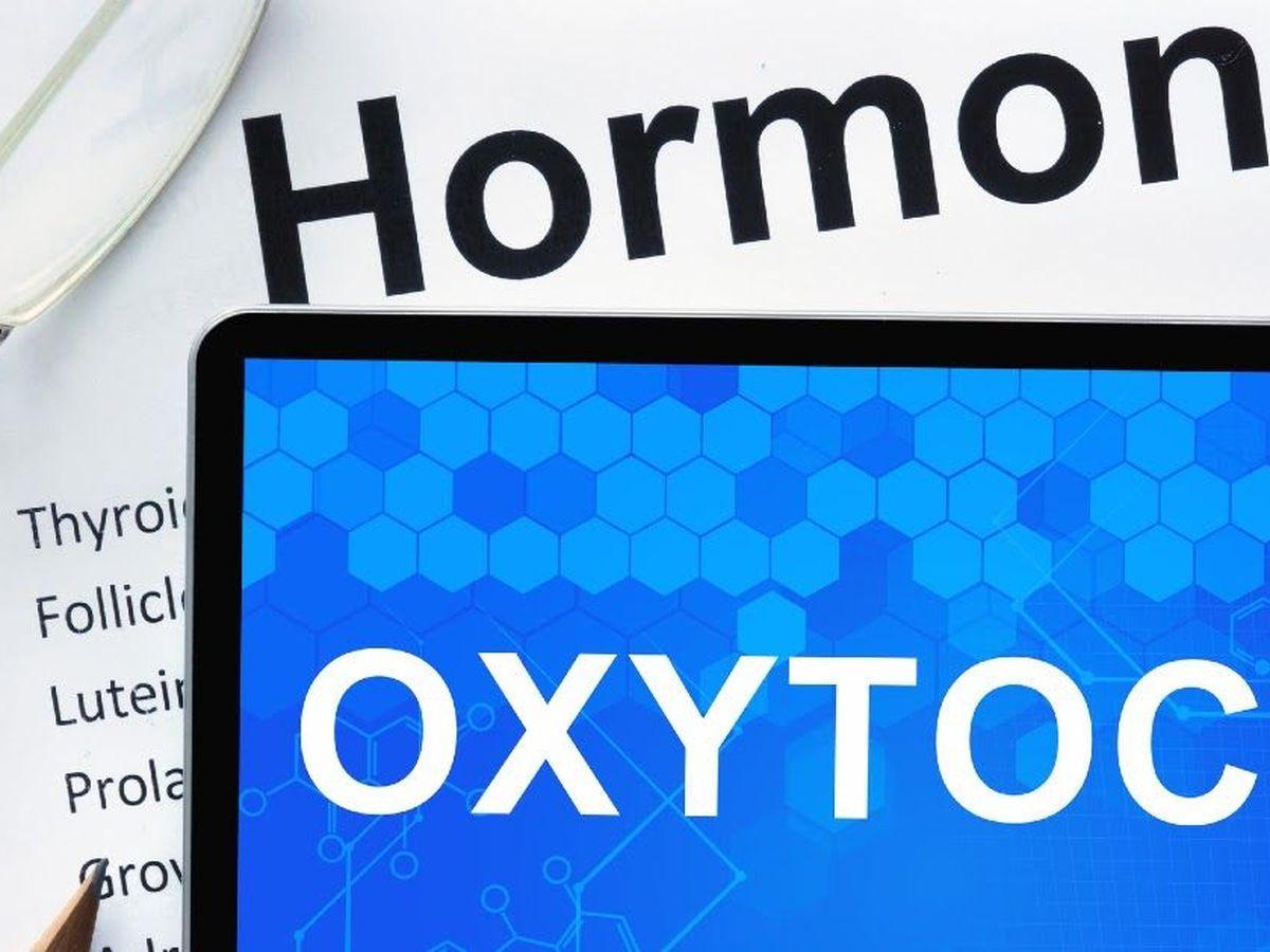Окситоциновая связь . что такое окситоцин? - реальная качалка