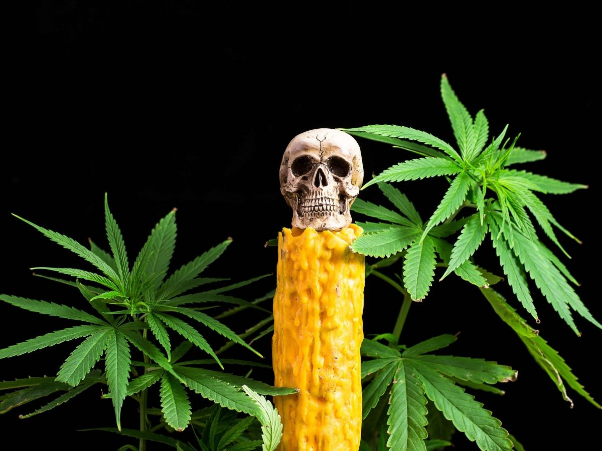 Как марихуана влияет напсихическое здоровье иможноли курить людям спсихическими расстройствами — нож