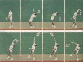 Теннис — википедия. что такое теннис
