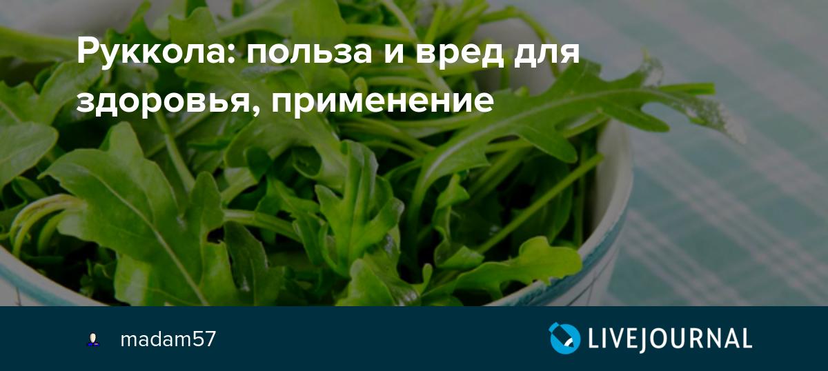 Рукола, влияние на организм и применение в кулинарии