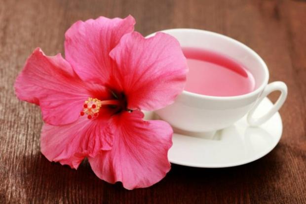 Замечательный каркаде: полезные свойства чая для женщин и мужчин, противопоказания и правила заваривания