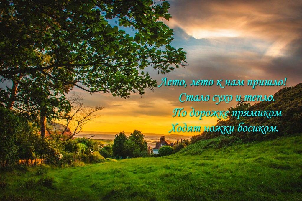 Новые стихи про лето для детей