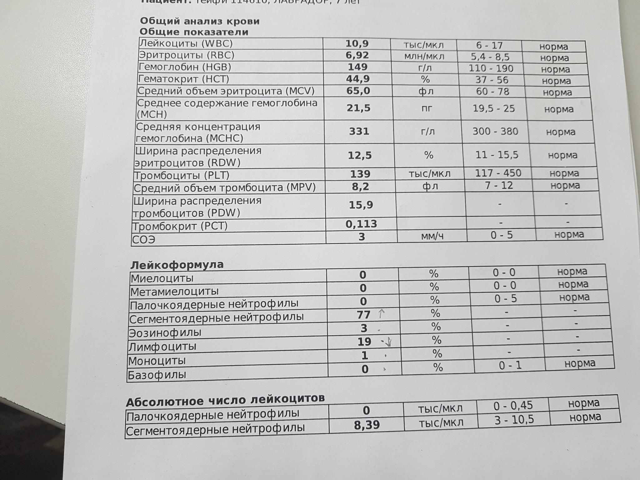 Pct в анализе крови что это такое: что значит тромбокрит выше, ниже нормы, расшифровка | hk-krasnodar.ru