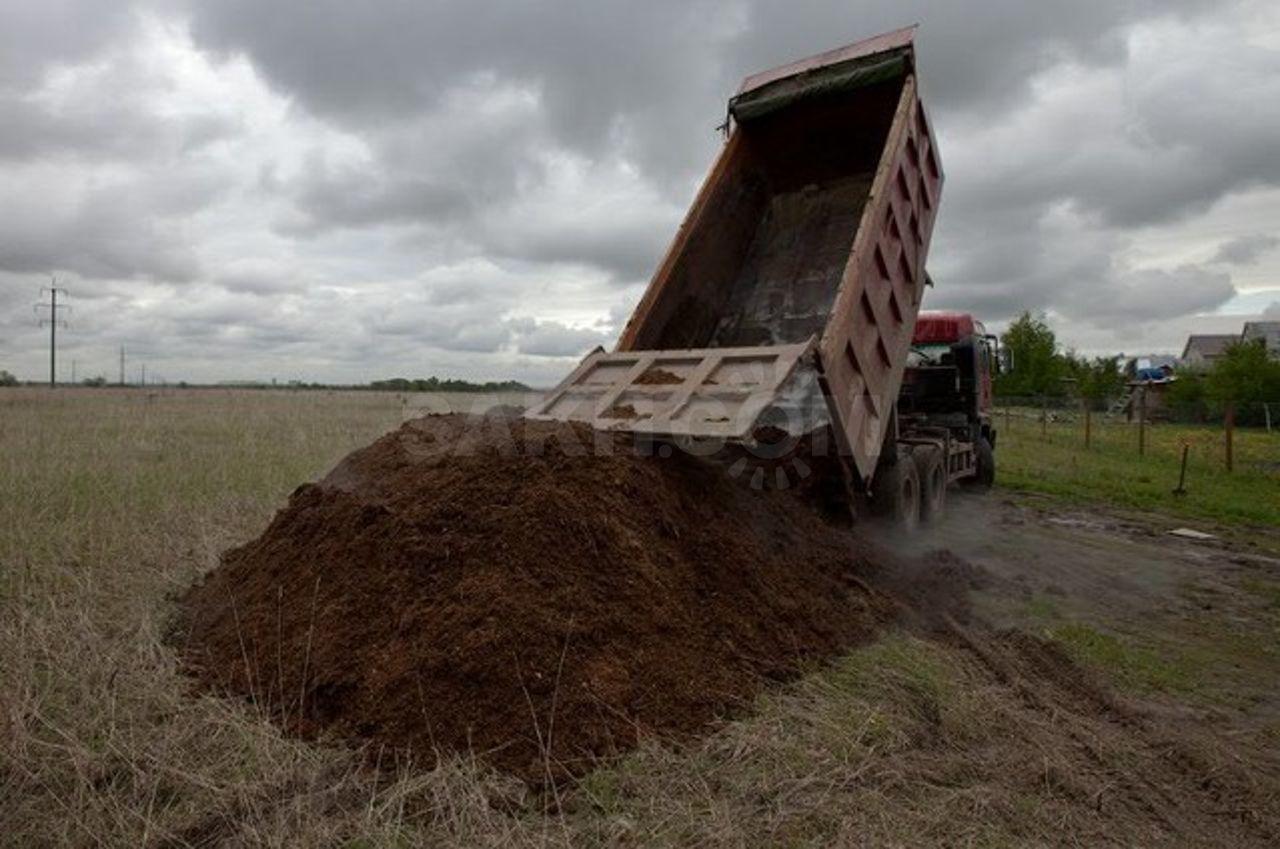 Овечий навоз как удобрение: отзывы и рекомендации по применению на огороде