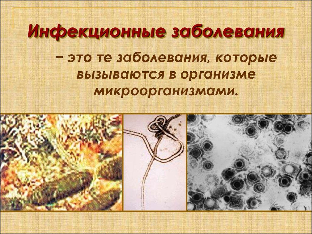 Какие бывают виды инфекционные заболевания человека, каковы причины возникновения, симптомы и лечение инфекционных заболеваний