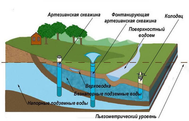 Как определить уровень грунтовых вод на участке: на какой глубине они могут быть, как узнать их залегание и для чего?
