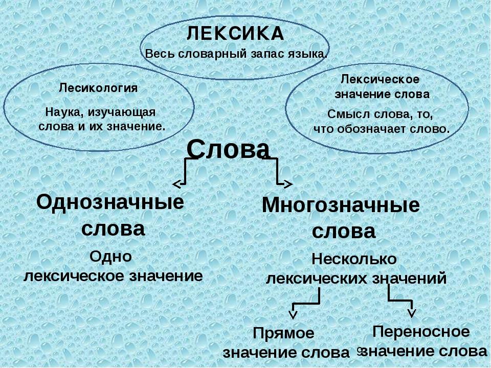 Однозначные и многозначные слова