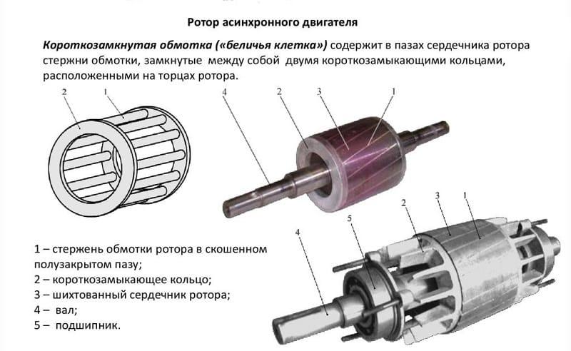 Ротор-2 — википедия. что такое ротор-2