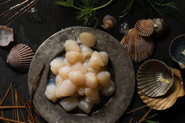 Морские гребешки - характеристики, состав, применение, рецепты, польза и вред