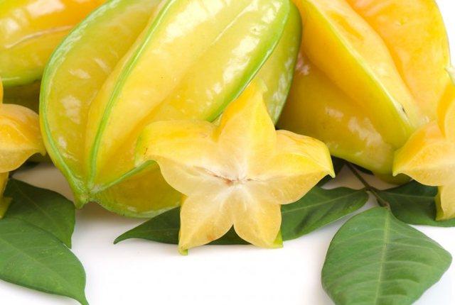 Карамбола или карамболь. выращивание в домашних условиях. | floplants. о комнатных растениях