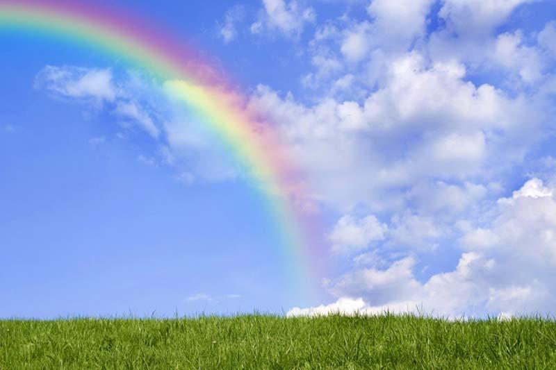 Открытое занятие «радуга»