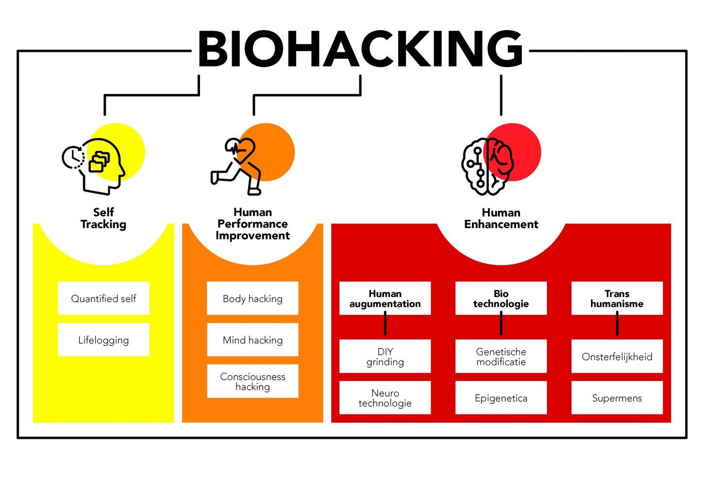 Биохакинг — что это такое? с чего начать — питание и препараты
