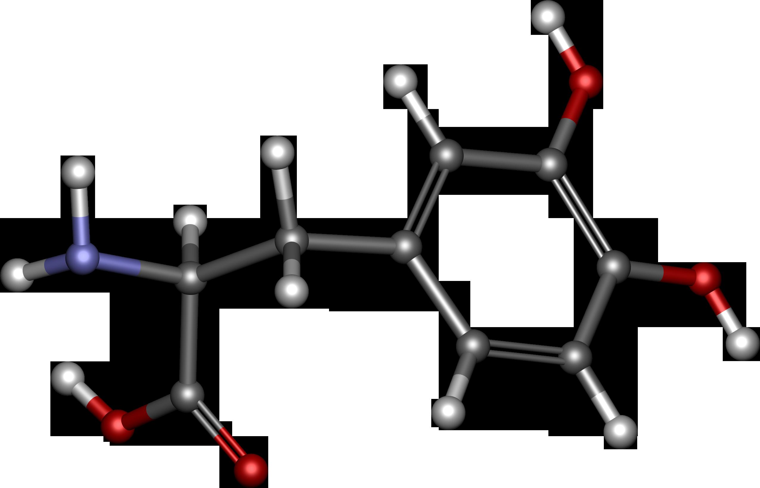 Дофамин - гормон счастья: описание, влияние на организм, как увеличить уровень дофамина