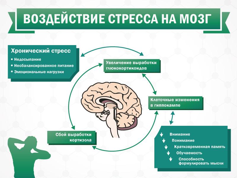 Стресс что это такое простыми словами в психологии