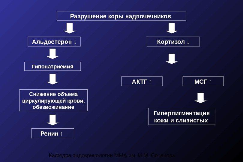 Гормон альдостерон: основные функции, нормы, возможные отклонения и их устранение