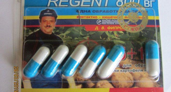 Регент – это кто