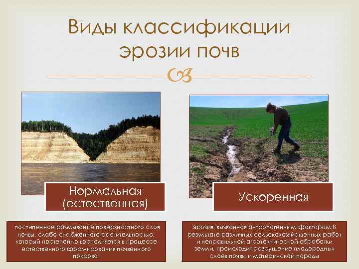 Эрозия почвы: что такое процесс разрушения почвы водой и ветром? что делают для ее предотвращения? виды и причины