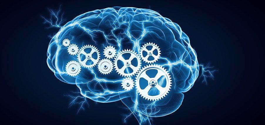 Нарушение когнитивных функций (памяти, речи, восприятия). когнитивные расстройства что относится к когнитивным функциям - лечим сердце