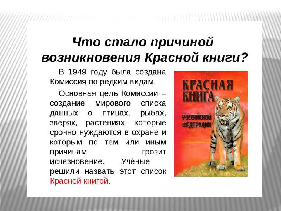 Какие животные занесены в красную книгу россии?