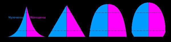 Половозрастная пирамида населения характеризует. что такое половозрастная пирамида? возрастно-половая пирамида омолаживающая
