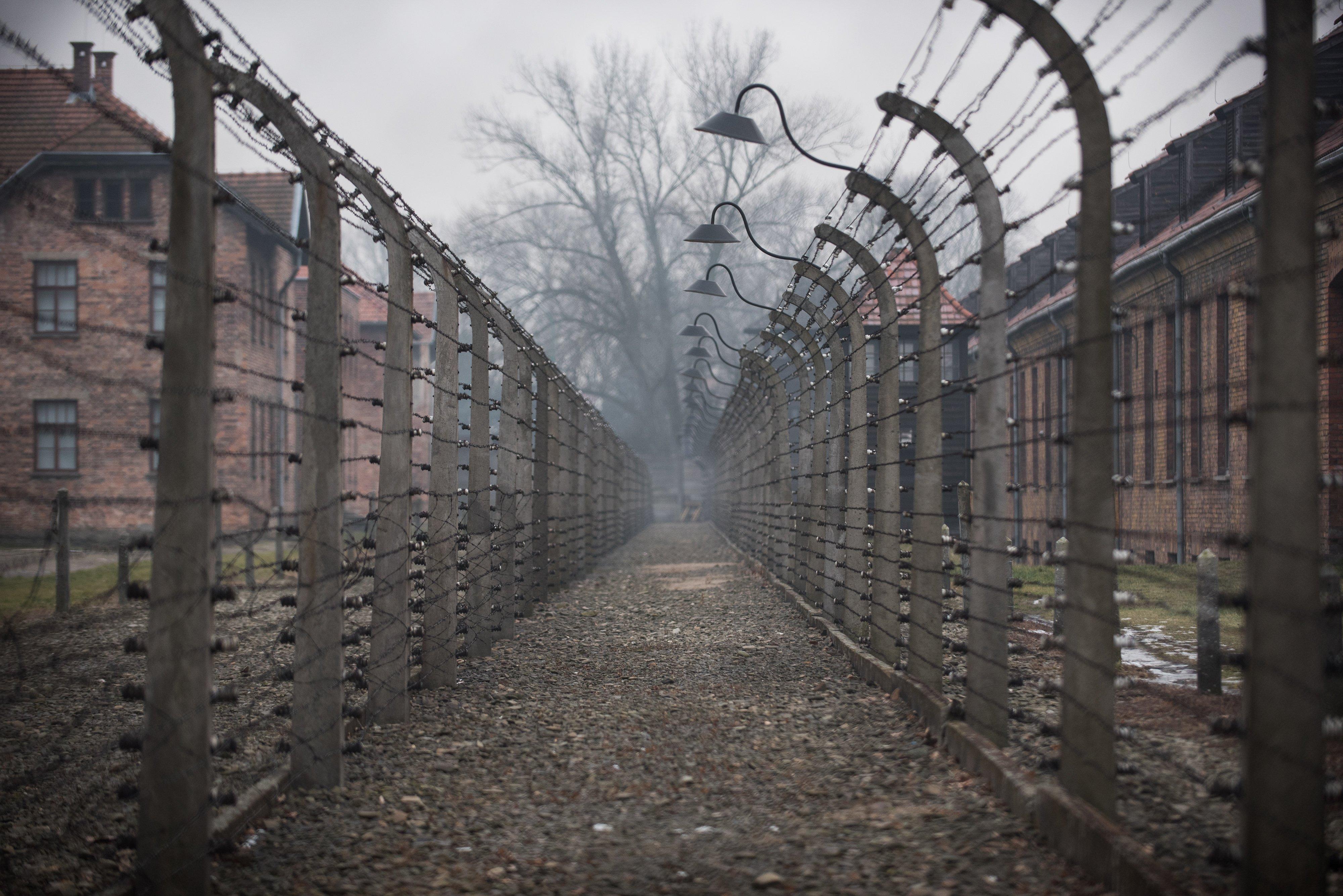 Дети и холокост — википедия. что такое дети и холокост