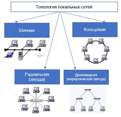 Локальная сеть: основы функционирования компьютерных сетей