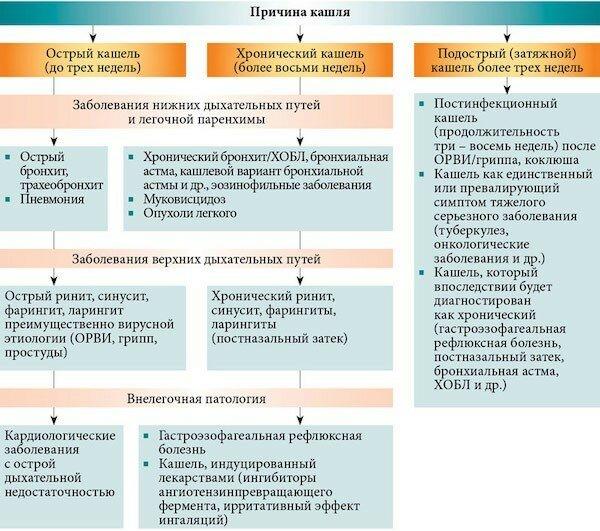 Сухой кашель у взрослого: причины, лечение и профилактика