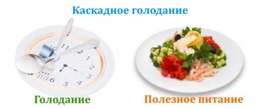 Фастинг и схема периодического голодания 16/8 | диетолог.ру