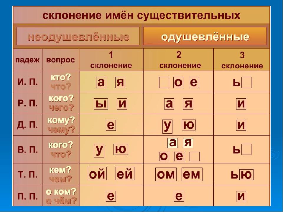 Узнаем что называется склонением в русском языке? склонение существительных