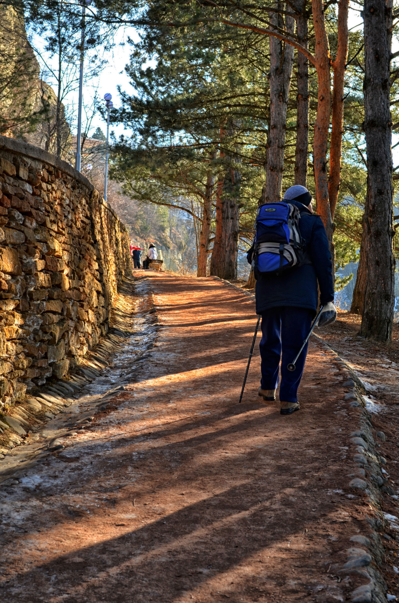 Что такое лечебная дозированная ходьба терренкур – особенности и показания