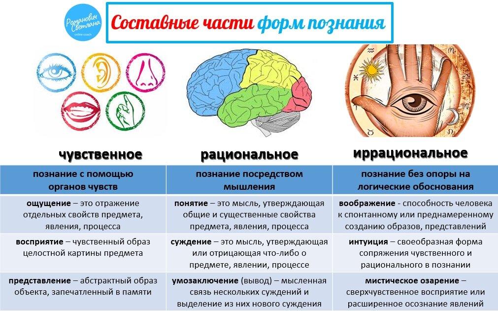Познание (в философии)