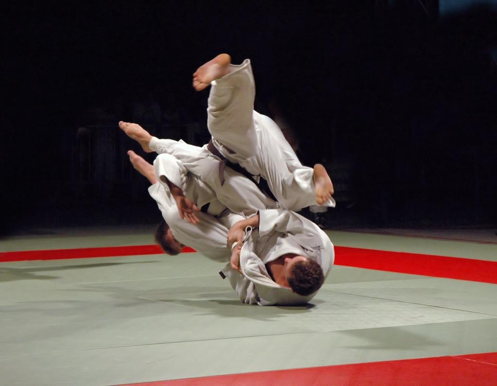 Что такое татами. так что же такое татами? татами, которые используются в сражениях сумо
