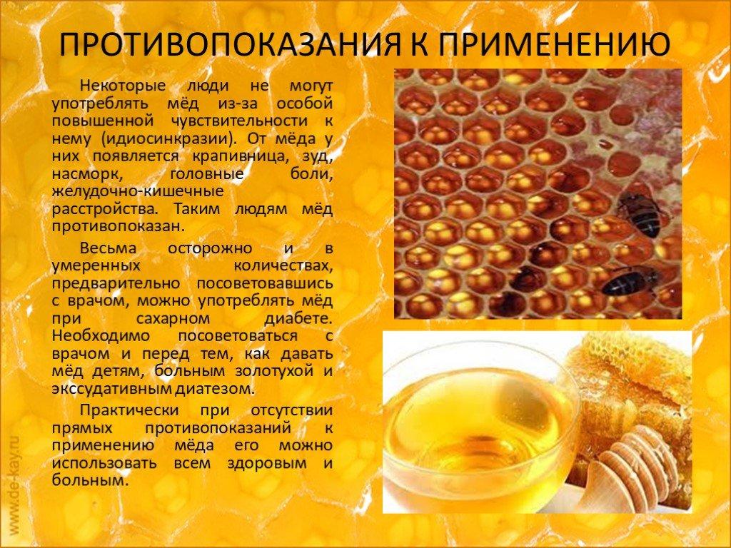 Полезные свойства и как принимать пчелиную пергу