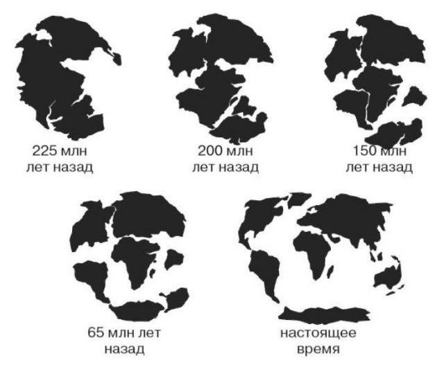 Земная поверхность: основные формы и виды
