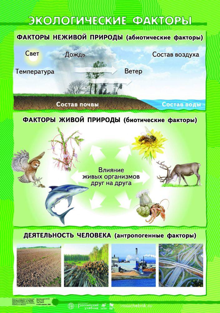 Организм и факторы среды