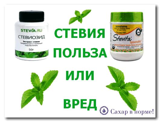 Стевия — натуральный сахарозаменитель, где купить стевию.