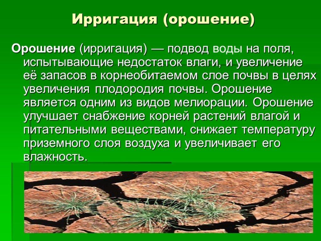 Ирригация википедия