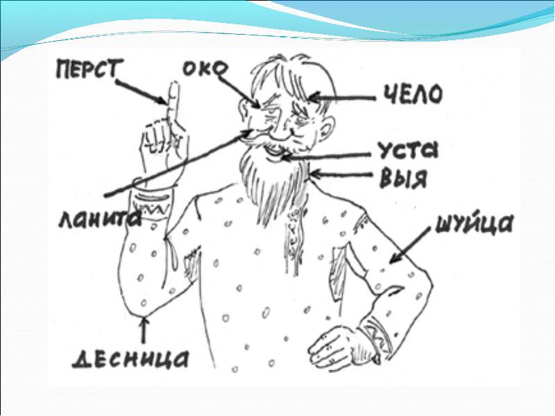 Алеют ланиты. что такое ланита?