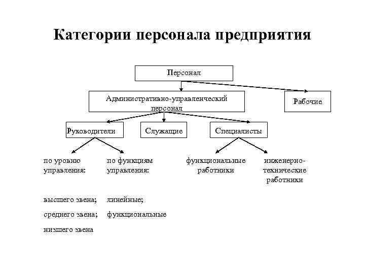 Итр-работники - это кто? характер функций специалиста и сфера его деятельности :: businessman.ru
