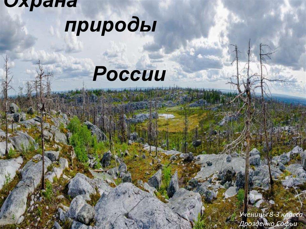 Правила охраны природы: принципы и примеры : labuda.blog правила охраны природы: принципы и примеры — «лабуда» информационно-развлекательный интернет журнал