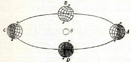 Небесный экватор – это один из важнейших элементов небесной сферы