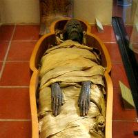 Мумия (фильм, 1932) — википедия. что такое мумия (фильм, 1932)