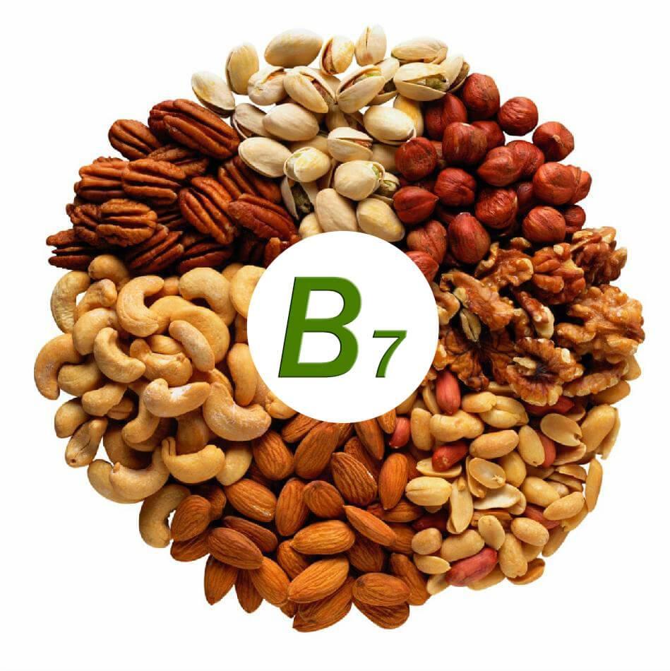 Витамин b7 (биотин) что это такое, где содержится, полезные свойства витамина h