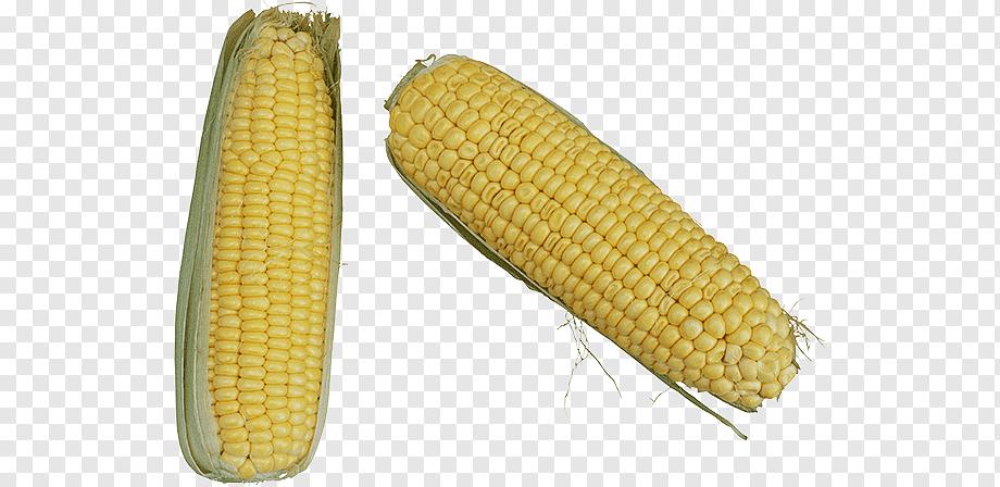 Дебетовая карта кукуруза — условия, оформление, отзывы
