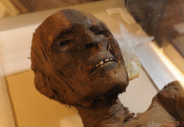 Мумия что это? значение слова мумия