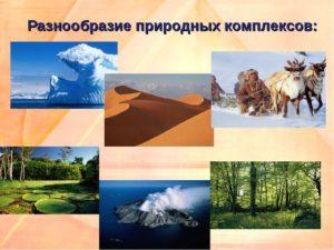 Неживая природа - это... определение, особенности и отзывы